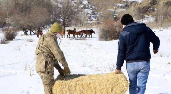 Kar kalınlığının bir metreye yaklaştığı Erzincan'ın İliç ilçesi kırsalı...