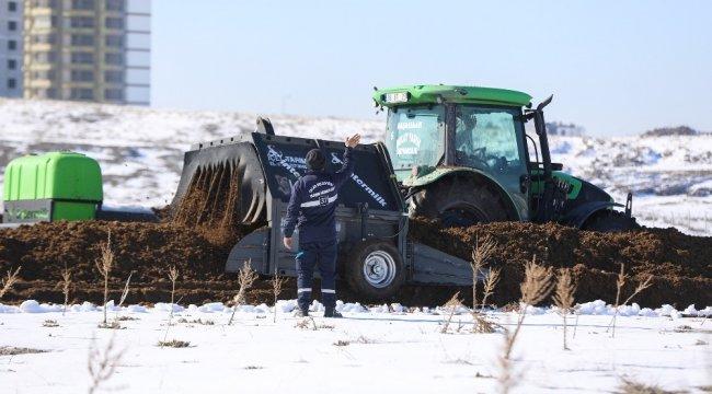 Talas Belediyesi'nin doğaya katkıları devam ediyor. Kırsal mahallelerde...