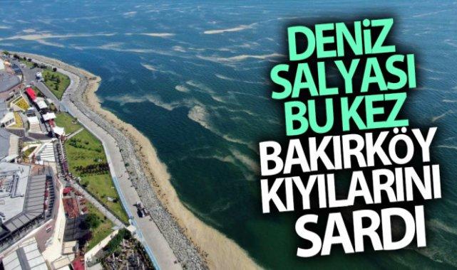 Deniz salyası bu kez Bakırköy kıyılarını sardı